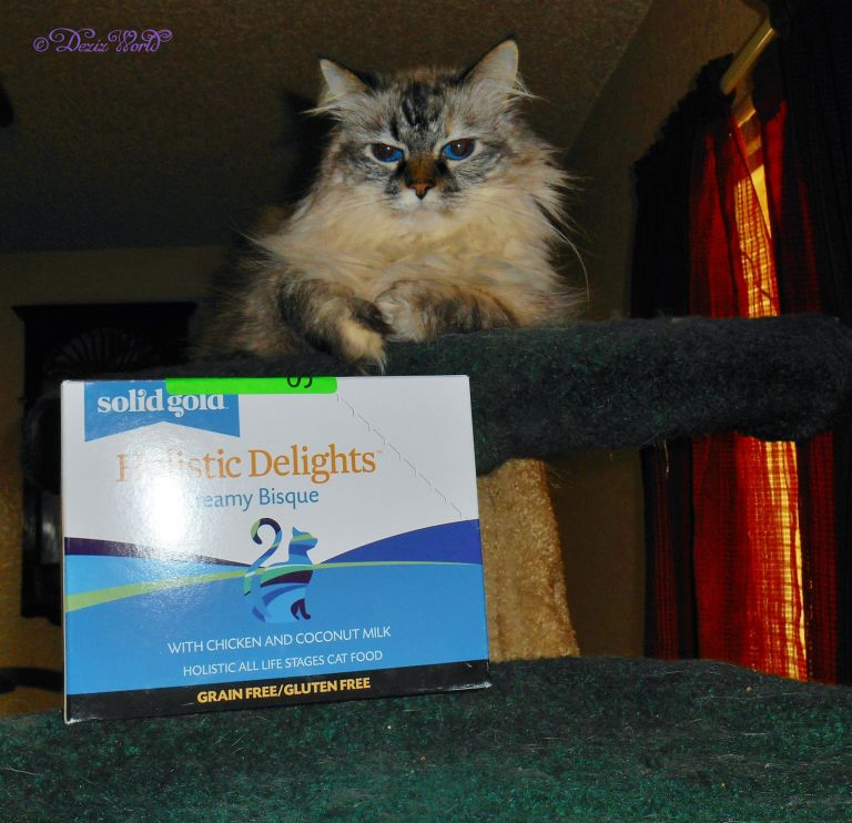 Dezi poses with Holistic Blends Creamy Bisque cat food