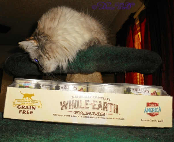Dezi with case of Whole Earth Farms cat food