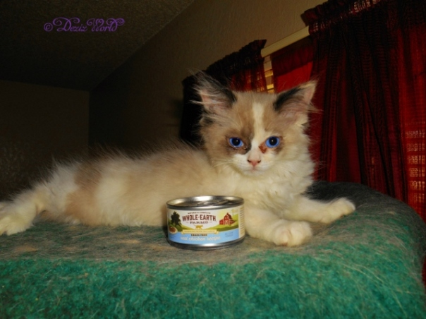 Raena with can of Whole Earth Farms cat food