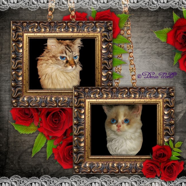 Dezi and Raena in a frame surrounded by roses