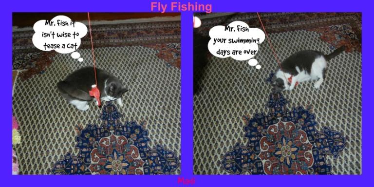 Madi Fly fishing