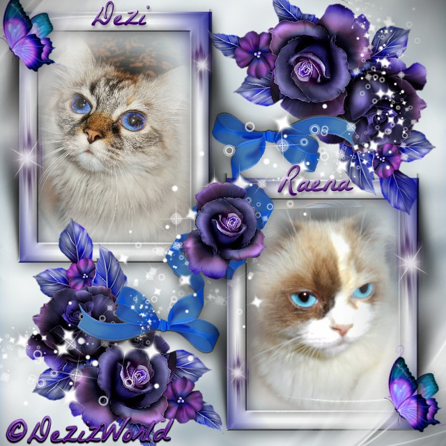 Dezi and Raena in picture frame with blue and purple flowers surrounded by a cloudy white