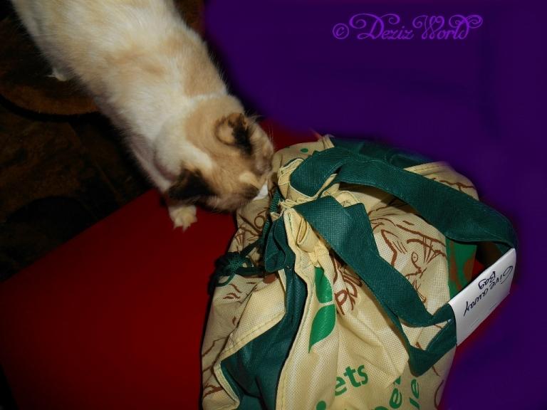 Raena sniffs bag of toys