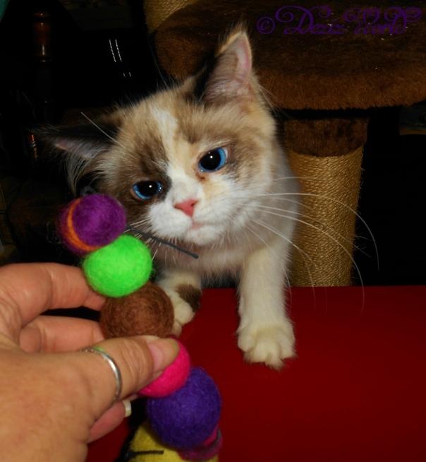 Raena with her catty pillar