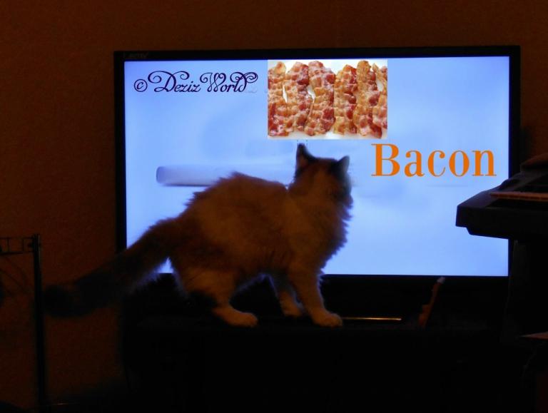 Raena watches tv