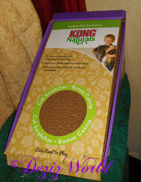 Kong Incline Cat Scratcher