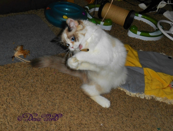 Raena playing with wand toy