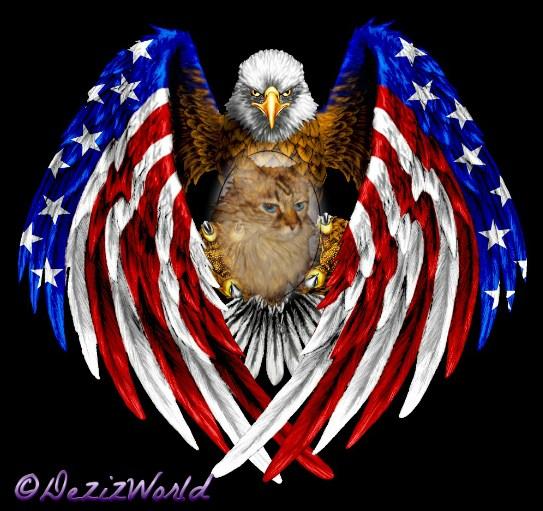 Dezi on Eagle