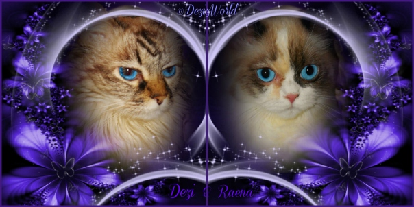 Dezi and Raena in a purple frame