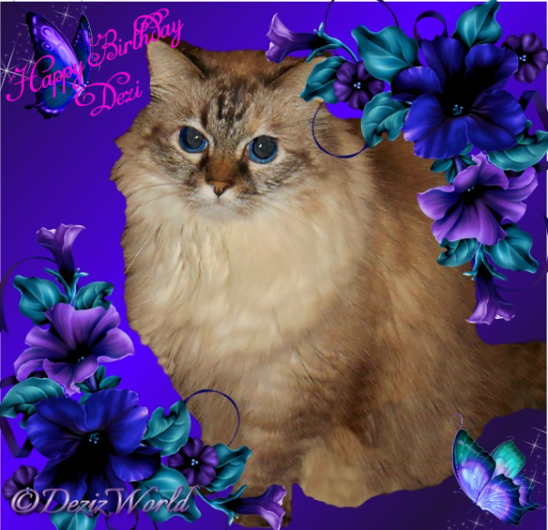 Happy Birthday Dezi in a purple frame