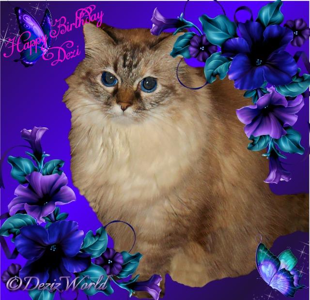 Happy Birthday Dezi in a purple frame
