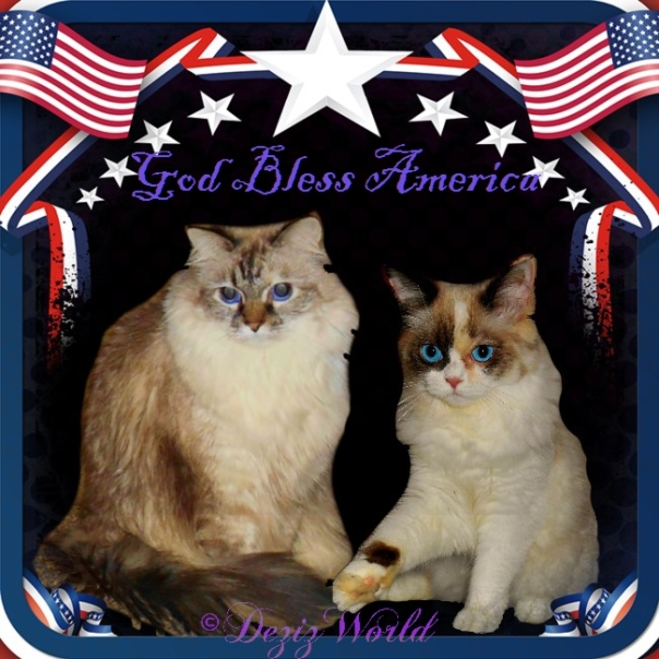 Dezi and Raena in an America flag frame with the stars and stripes
