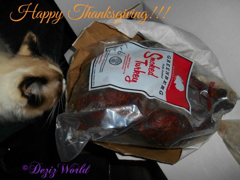 Raena sniffing Thanksgiving turkey