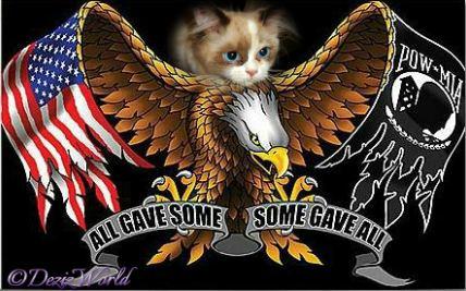 Raena over POW MIA eagle