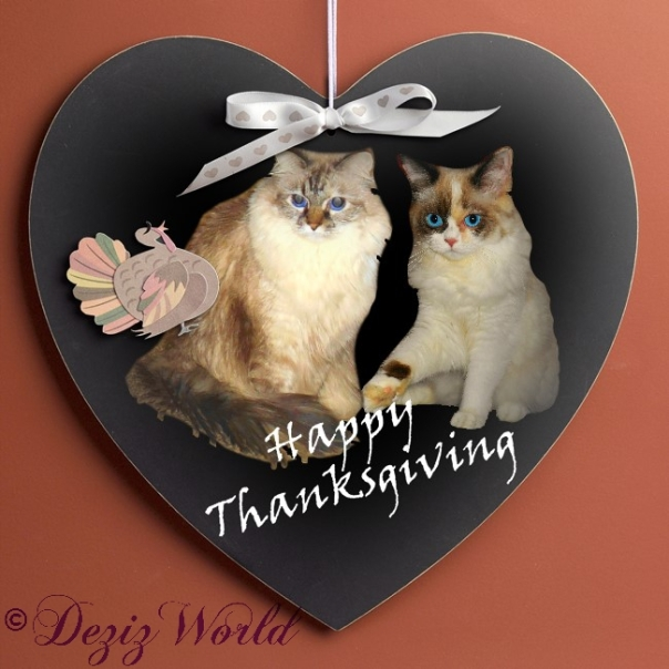 Dezi and Raena in a heart shaped Happy Thanksgiving frame