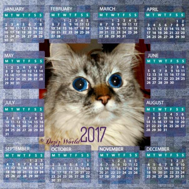 Dezi in a 2017 calendar