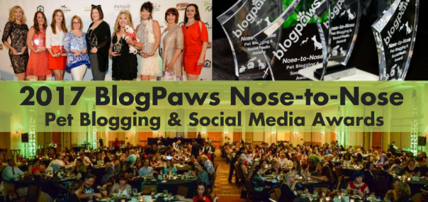 Blog Header Nose to Nose awards