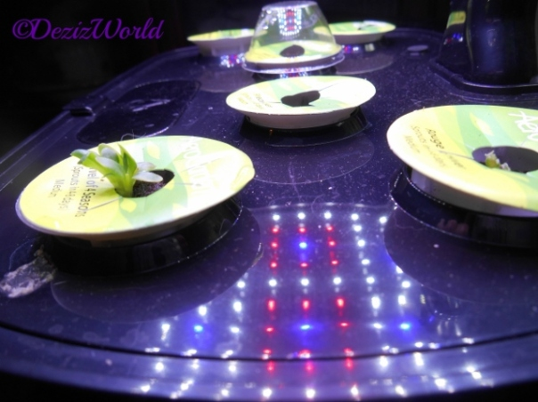 Aerogarden with salad pods