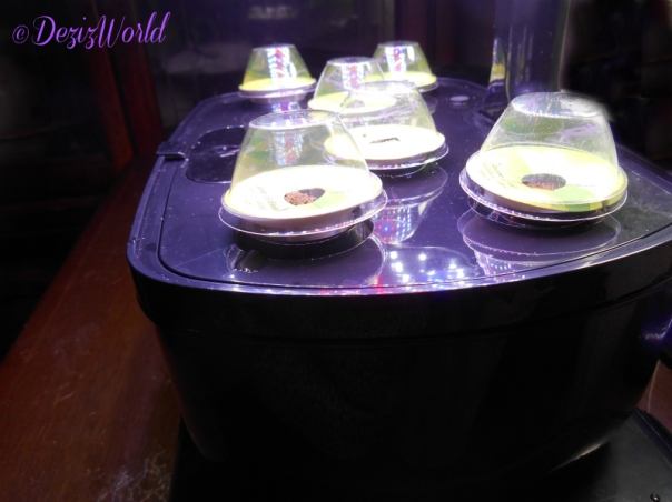AeroGarden with new pods