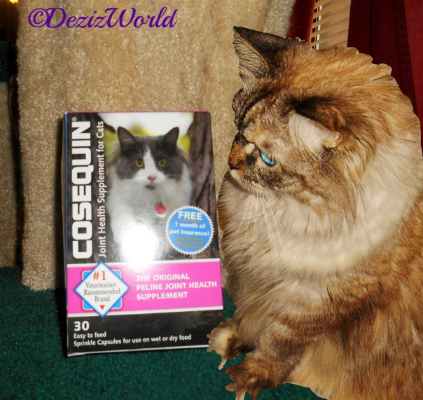 Dezi poses by the box of Nutramax Cosequin joint relief capsules for cats