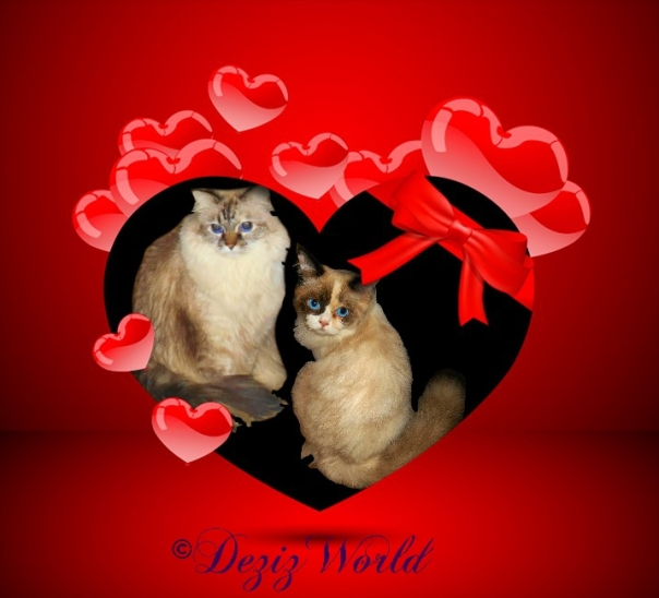 Dezi and Raena in a red gift heart frame
