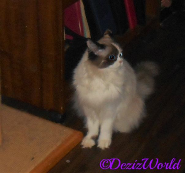 Raena sits in hallway