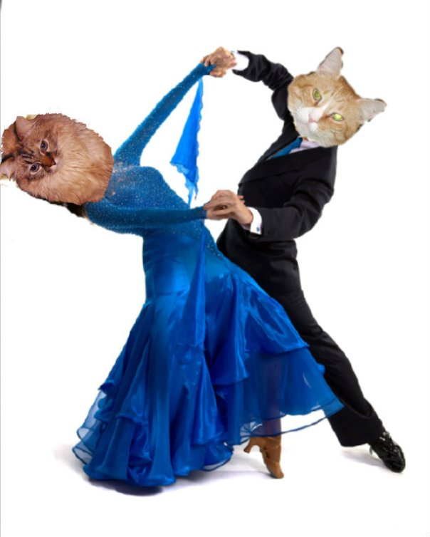 Timmy Tomcat and Dezi dance at a Cat Scout event