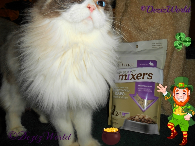 Raena posing beside the bag of Nature's Variety Freeze Dried Mixers