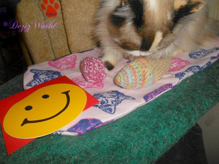 Raena sniffs made with love birthday toys