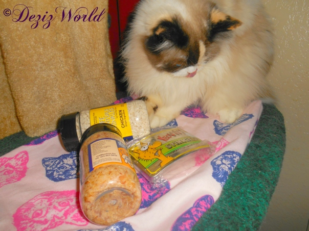 Raena checks out her 1st birthday gift from the Tomacat family
