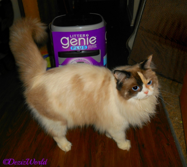 Raena poses with the Litter Genie
