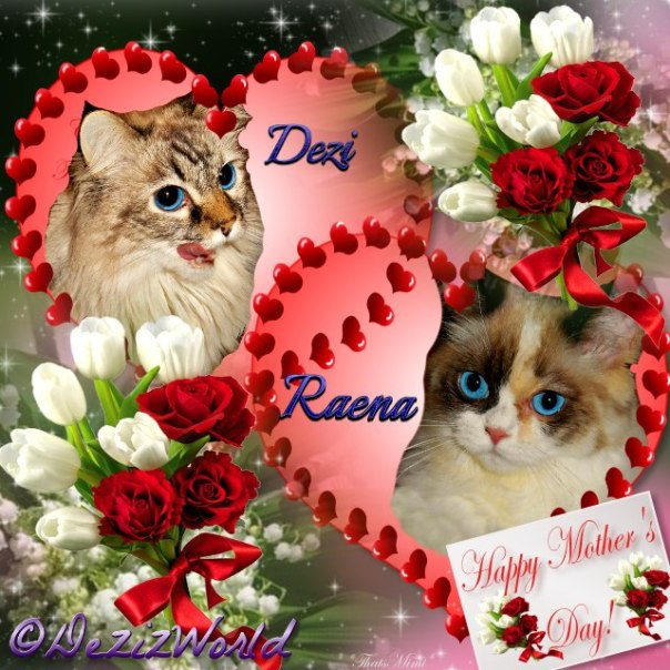 Dezi and Raena in hearts with red and white roses for Mother's day