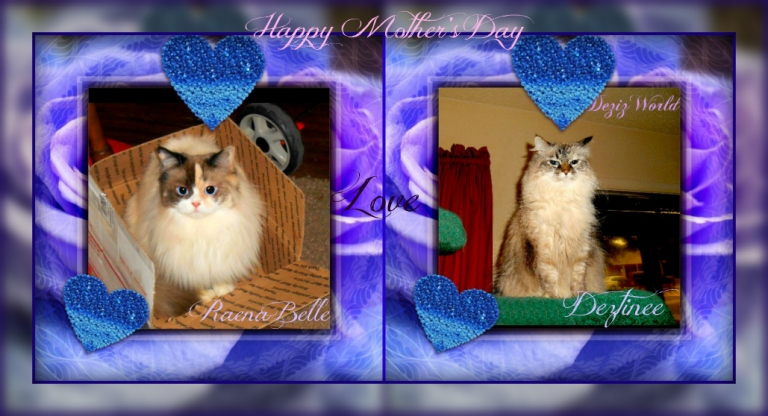 Dezi and Raena in a purple blue heart frame card for Mother's day