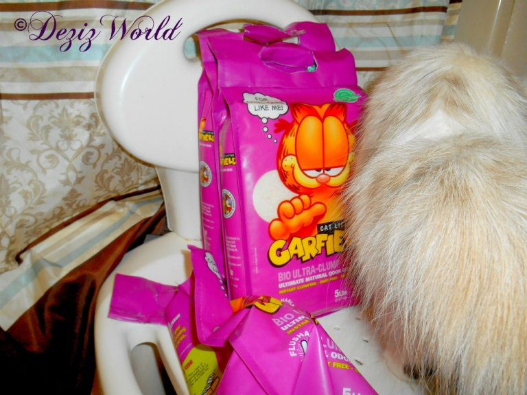 Raena with the Garfield litter gift