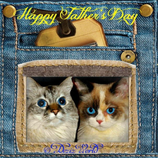 Dezi and Raena on the back pocket of jeans for Father's day