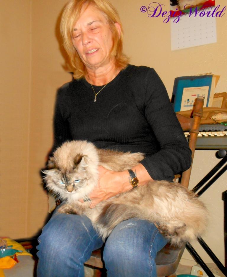 Dezi sits in Elizabeth's lap