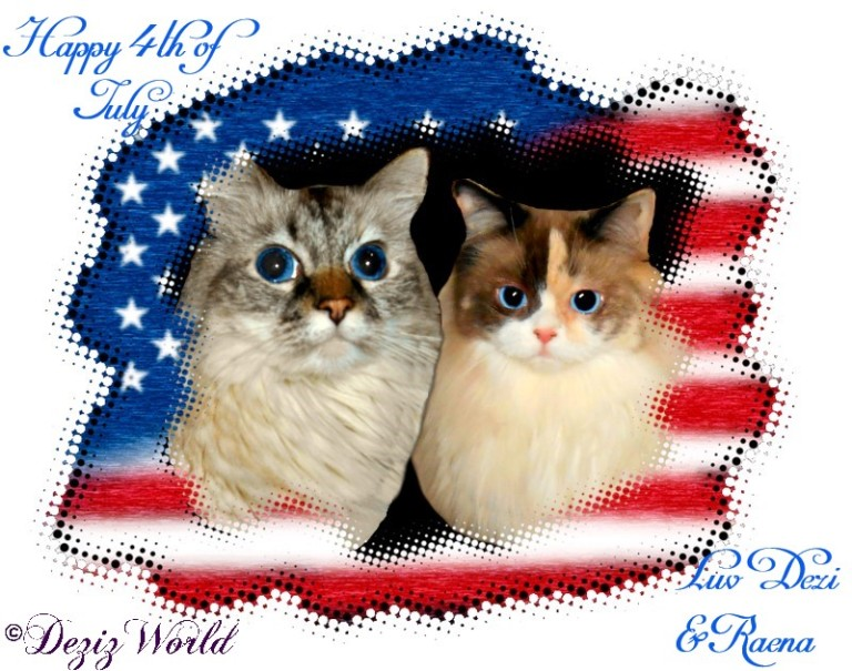 Dezi and Raena in the US flag wishing a Happy 4th