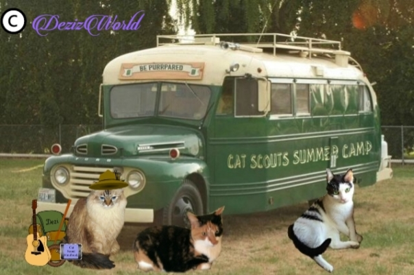 Dezi, Cat and Aetheling prepare to board Cat Scouts bus