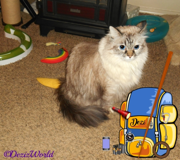 Dezi sits on floor with backpack and camping supplies for cat scouts summer camp trip