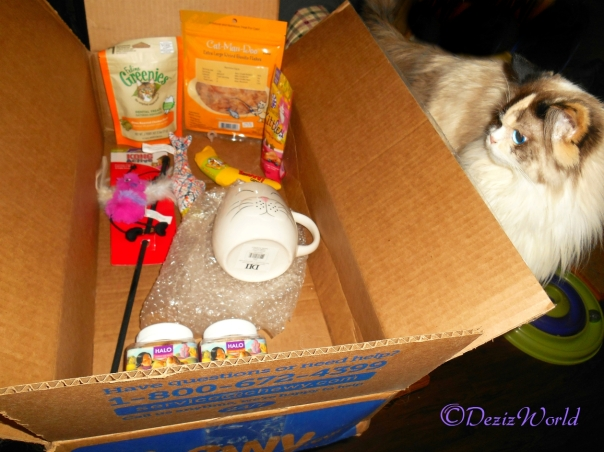 Raena checks out all her winnings from Chewy