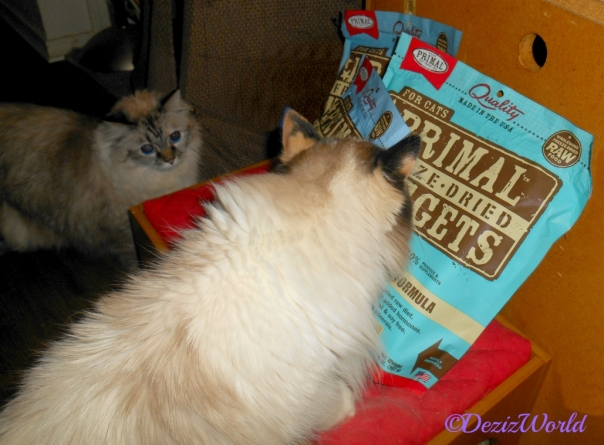 Dezi and Raena check out the Primal Freeze Dried cat food sent by Vonda
