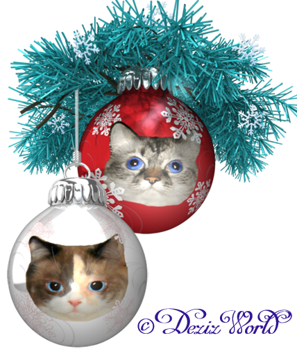 Dezi and Raena in Christmas ball decorations frame