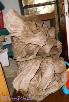 Packing paper spilling out of Chewy box