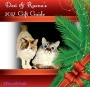 Chatting Cats: Holiday Gift Guide 2017