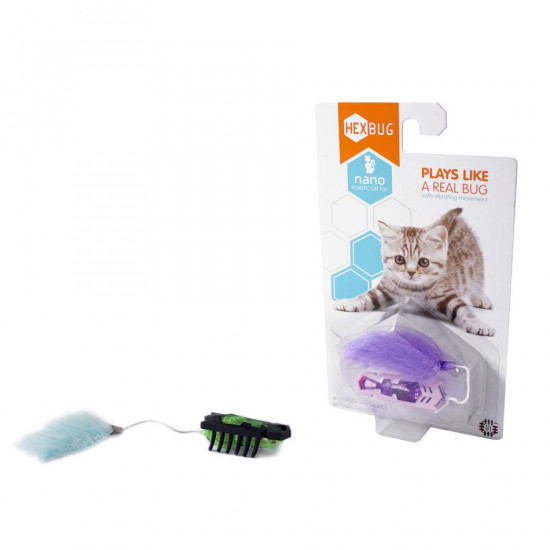 Hexbug for cats