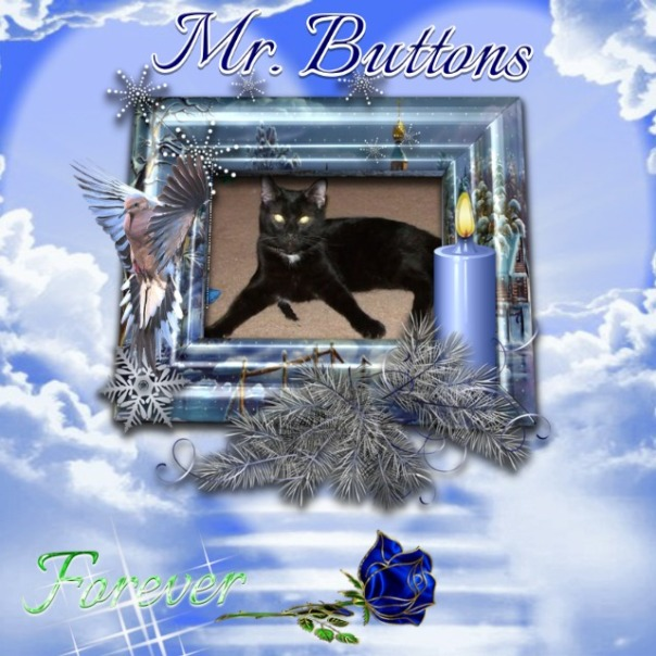 Buttons in a forever memoty frame
