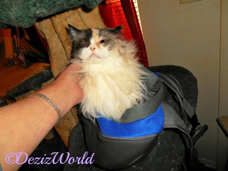Raena models the new sling carrier