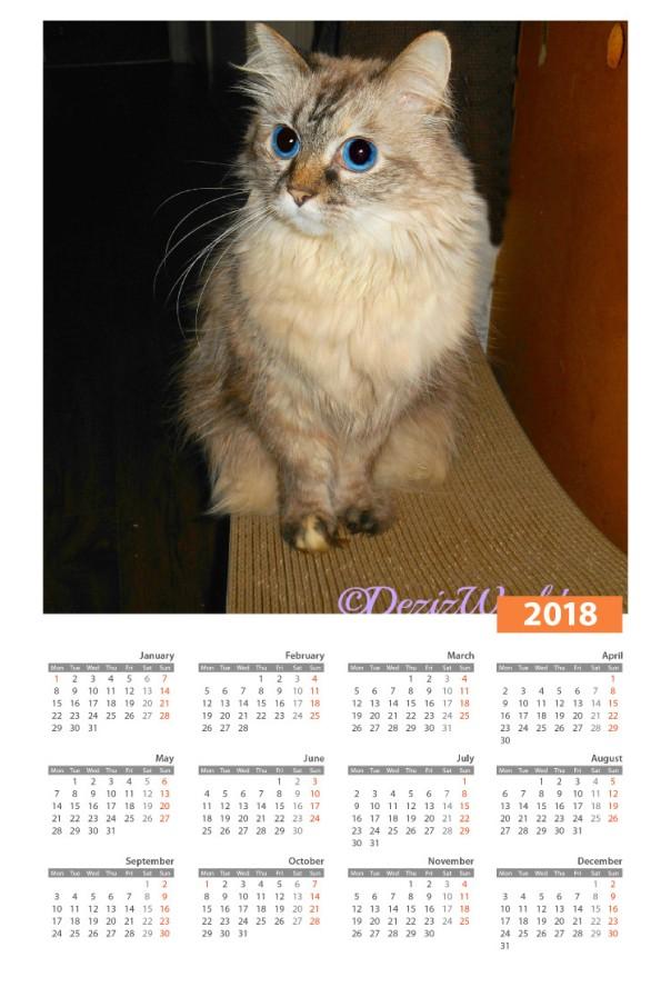 Dezi in 2018 calendar