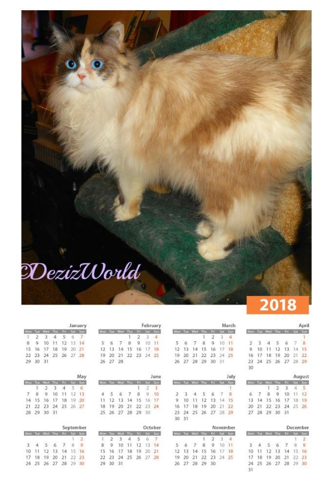 Raena in 2018 calendar