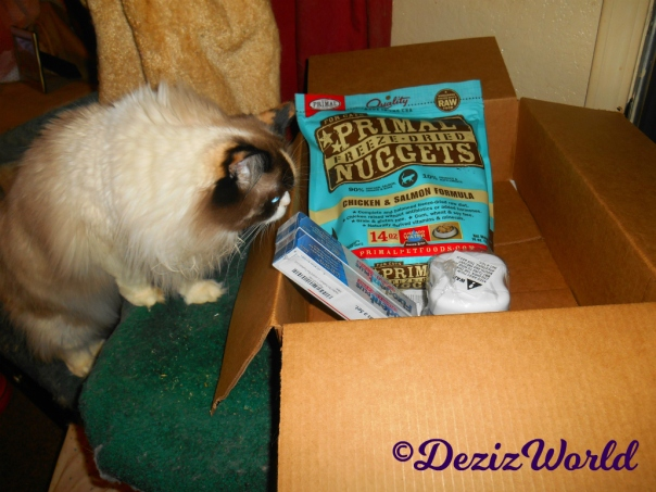 Raena checks out the gift box from awnty Carol with food and denture supplies